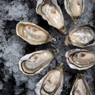 Plateau d'huîtres ouverte
